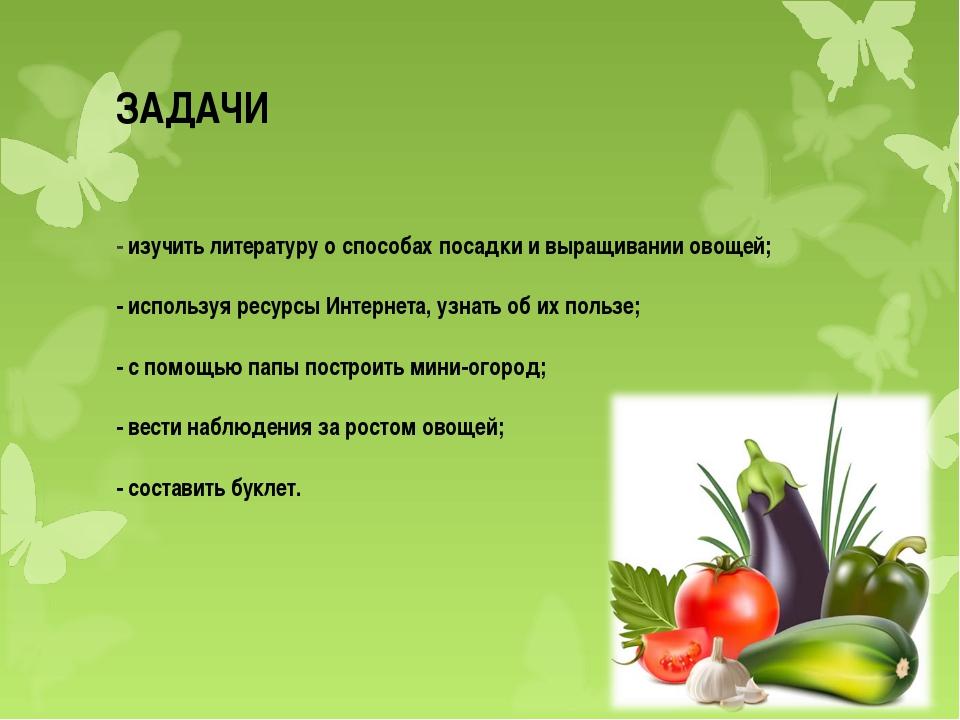 ЗАДАЧИ - изучить литературу о способах посадки и выращивании овощей; - исполь...