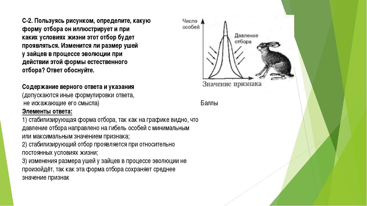 С-2. Пользуясь рисунком, определите, какую форму отбора он иллюстрирует и при...