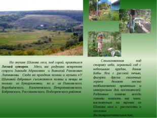 На опушке Шипова леса, под горой, приютился Лесной хуторок. Здесь вас радушно