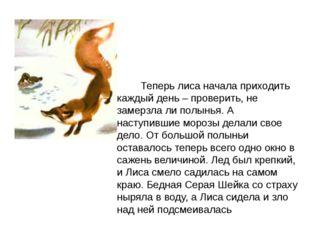 Теперь лиса начала приходить каждый день – проверить, не замерзла ли полынья