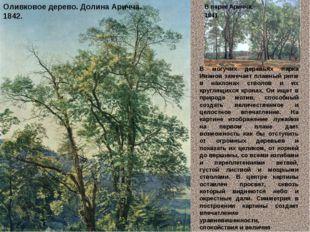 Оливковое дерево. Долина Аричча. 1842. В парке Аричча. 1841. В могучих де