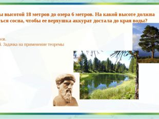 7. От сосны высотой 18 метров до озера 6 метров. На какой высоте должна перел