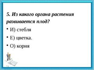 5. Из какого органа растения развивается плод? И) стебля Е) цветка. О) корня