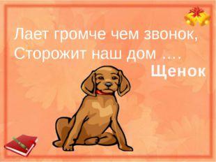 Лает громче чем звонок, Сторожит наш дом …. Щенок
