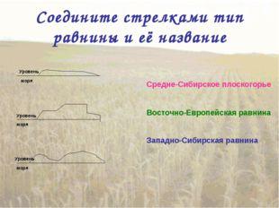 Соедините стрелками тип равнины и её название Восточно-Европейская равнина За