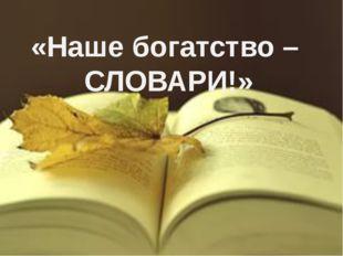 «Наше богатство – СЛОВАРИ!»