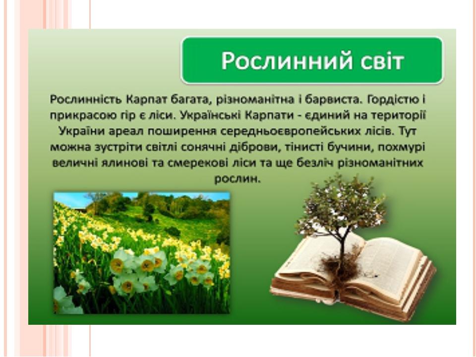 Рослини Червоної книги