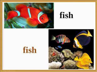 * fish fish