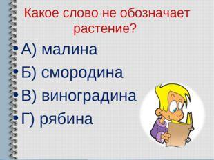 Какое слово не обозначает растение? А) малина Б) смородина В) виноградина Г)