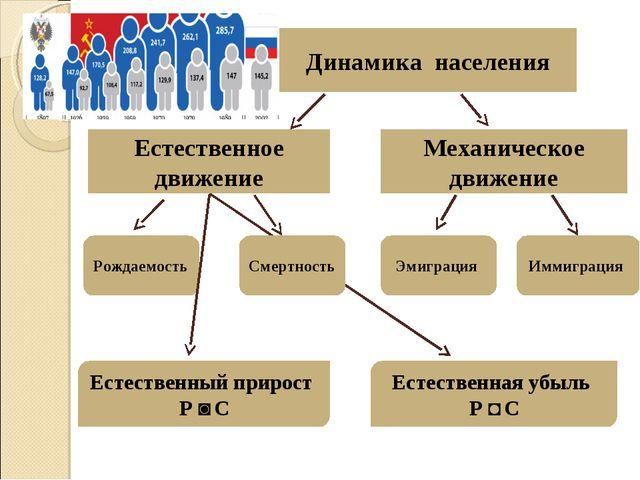 Динамика населения Естественное движение Механическое движение Рождаемость См...