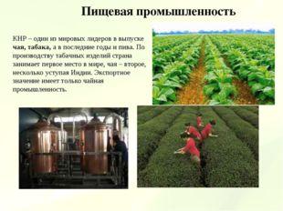 Пищевая промышленность КНР – один из мировых лидеров в выпуске чая, табака, а
