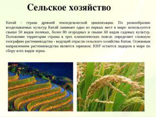 Китай – страна древней земледельческой цивилизации. По разнообразию возделыва