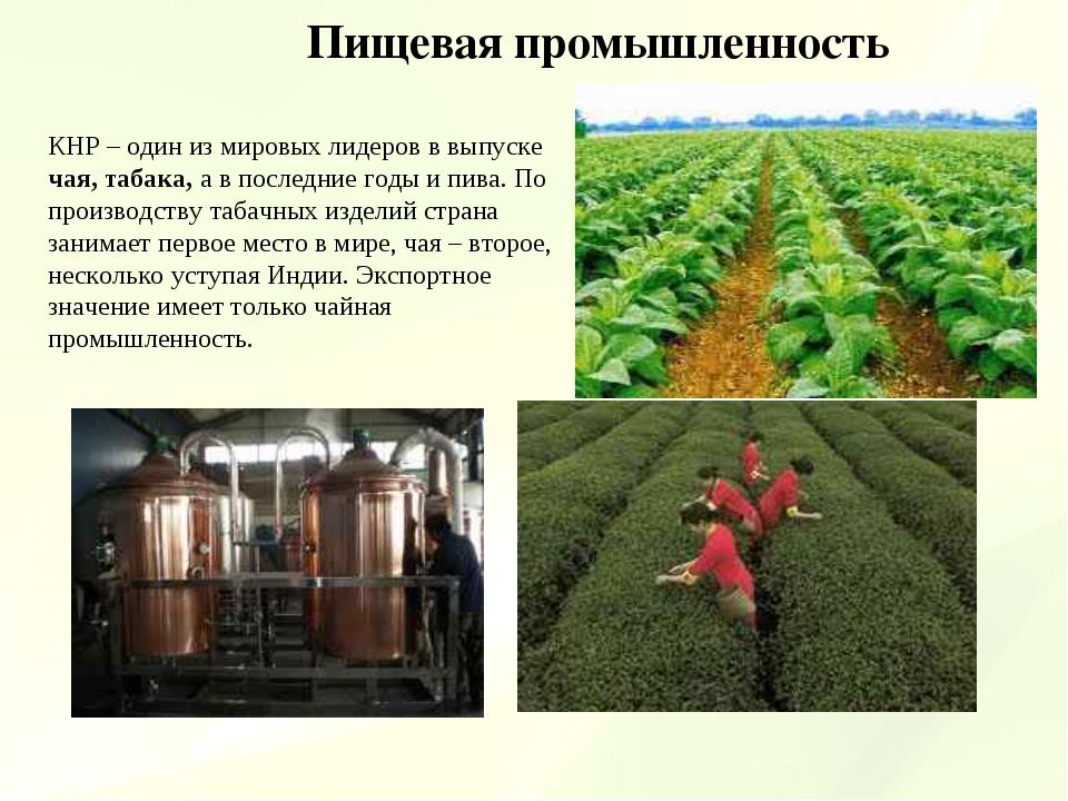 Пищевая промышленность КНР – один из мировых лидеров в выпуске чая, табака, а...