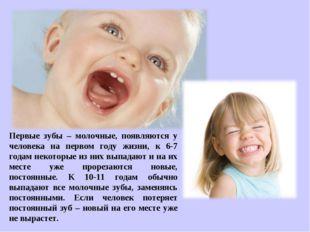 Первые зубы – молочные, появляются у человека на первом году жизни, к 6-7 год