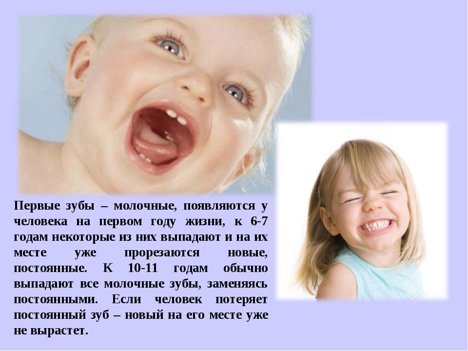 Первые зубы – молочные, появляются у человека на первом году жизни, к 6-7 год...