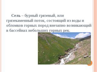 Сель – бурный грязевый, или грязекаменный поток, состоящий из воды и обломко