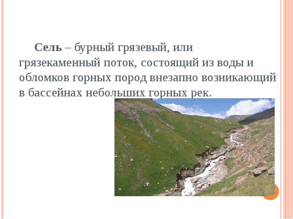 Сель – бурный грязевый, или грязекаменный поток, состоящий из воды и обломко...
