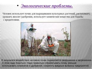 Экологические проблемы. Человек использует почву для выращивания культурных