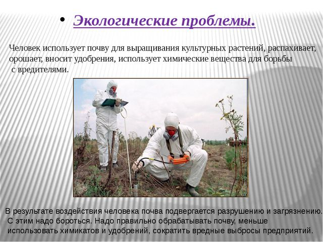 Экологические проблемы. Человек использует почву для выращивания культурных...