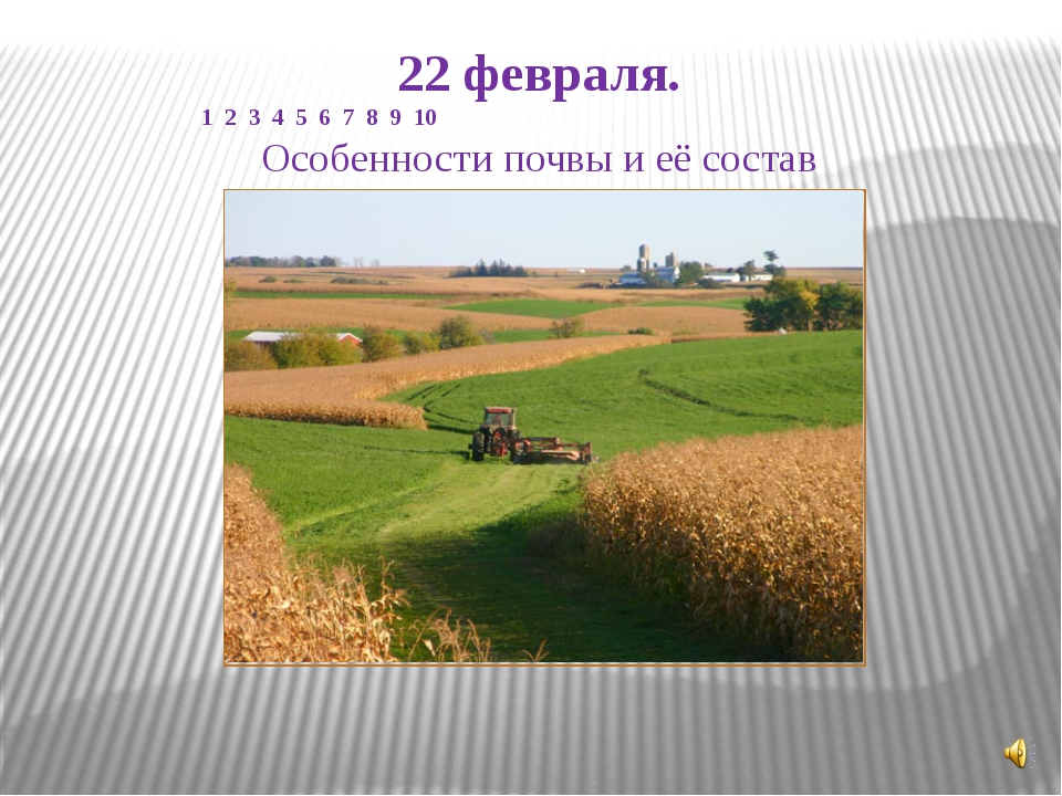 22 февраля. 1 2 3 4 5 6 7 8 9 10 Особенности почвы и её состав