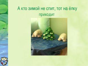 А кто зимой не спит, тот на ёлку приходит