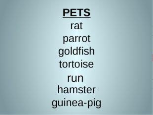PETS rat parrot goldfish tortoise hamster guinea-pig run run