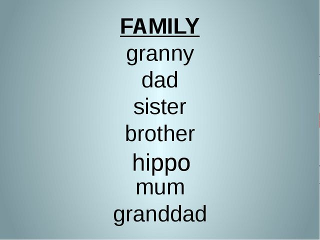 FAMILY granny dad sister brother mum granddad hippo hippo