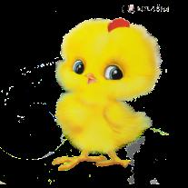 http://stat18.privet.ru/lr/0a262de64c174b1562828b37cec48e8b