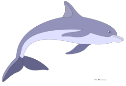 http://www.abc-color.com/image/coloring/dolphins/001/dolphin/dolphin-picture-color.png