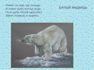 Живет он там, где холода, И ловит рыбу из-под льда. Он в шубе белой щеголяе