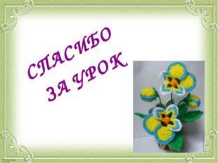 СПАСИБО ЗА УРОК © Фокина Лидия Петровна