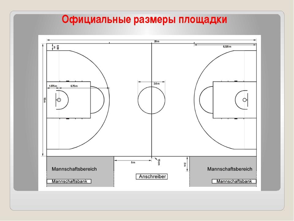 Официальные размеры площадки