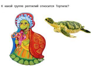 К какой группе рептилий относится Тортила?