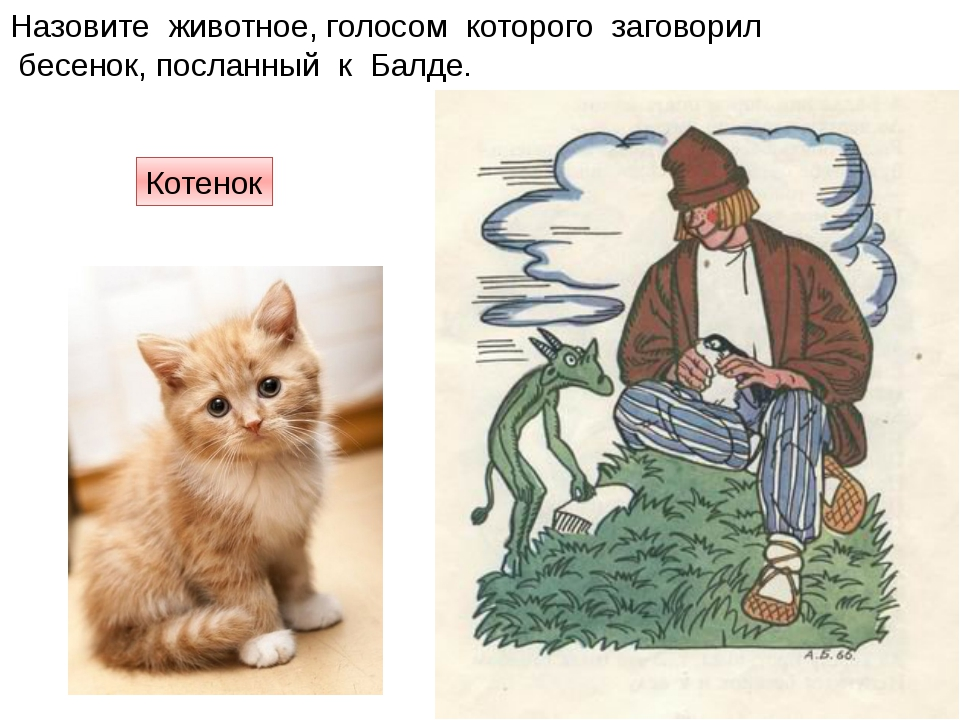 Назовите животное, голосом которого заговорил бесенок, посланный к Балде. Кот...