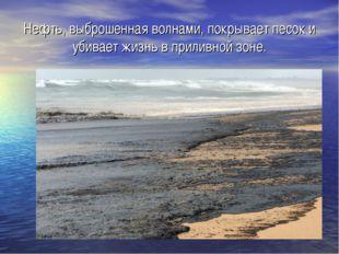 Нефть, выброшенная волнами, покрывает песок и убивает жизнь в приливной зоне.