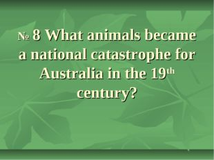 № 8 What animals became a national catastrophe for Australia in the 19th cen
