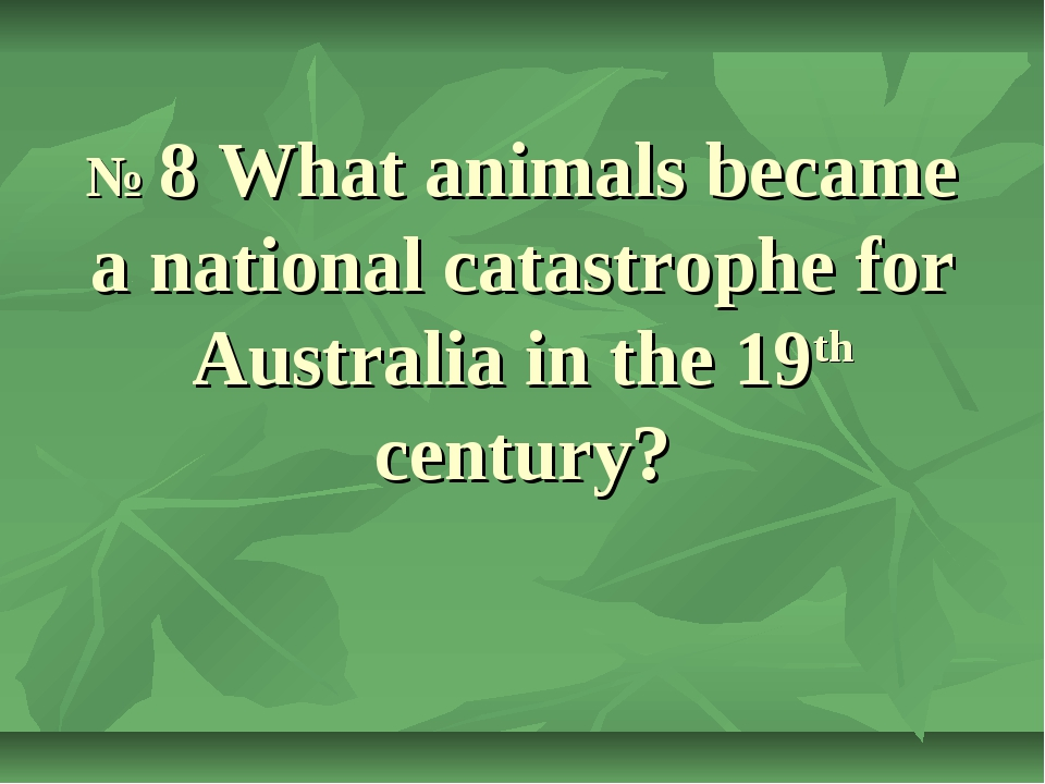 № 8 What animals became a national catastrophe for Australia in the 19th cen...