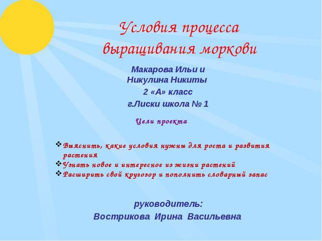 Условия процесса выращивания моркови Макарова Ильи и Никулина Никиты 2 «А» кл...