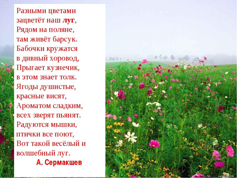 Разными цветами зацветёт нашлуг, Рядом на поляне, там живёт барсук. Бабочки...