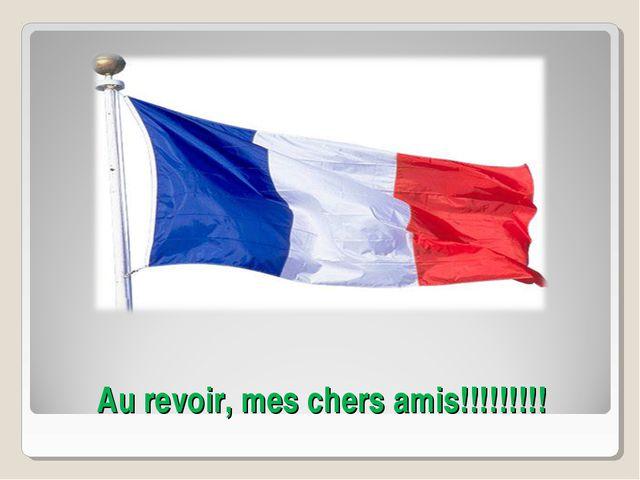 Au revoir, mes chers amis!!!!!!!!!