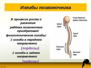 Изгибы позвоночника В процессе роста и развития ребёнка позвоночник приобрета