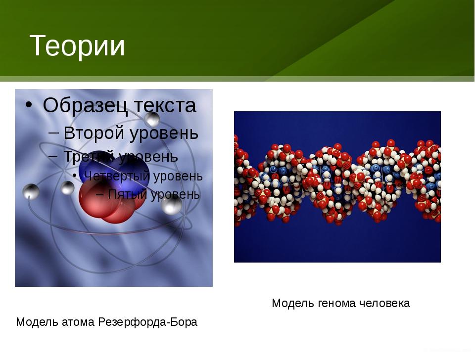 Теории Модель атома Резерфорда-Бора Модель генома человека