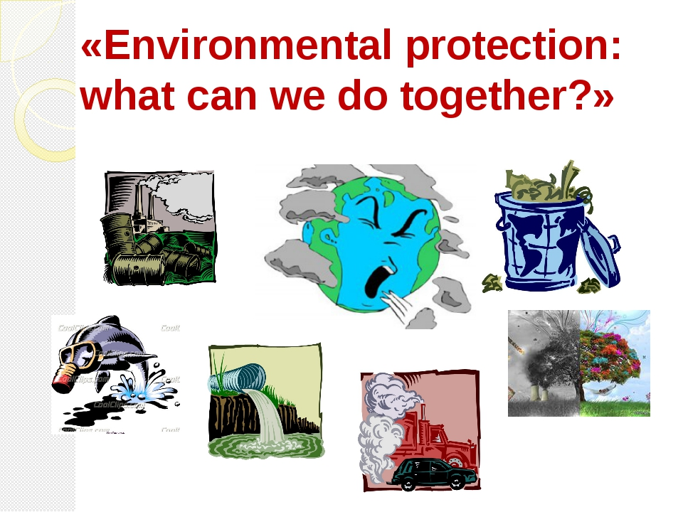 «Environmental protection: what can we do together?»