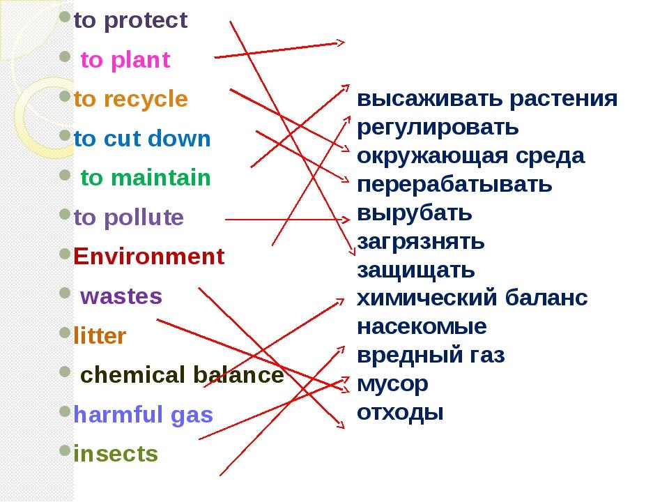высаживать растения регулировать окружающая среда перерабатывать вырубать заг...