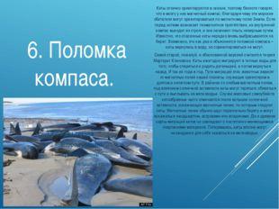 6. Поломка компаса. Киты отлично ориентируются в океане, поэтому биологи гово