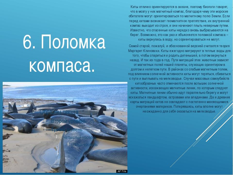6. Поломка компаса. Киты отлично ориентируются в океане, поэтому биологи гово...