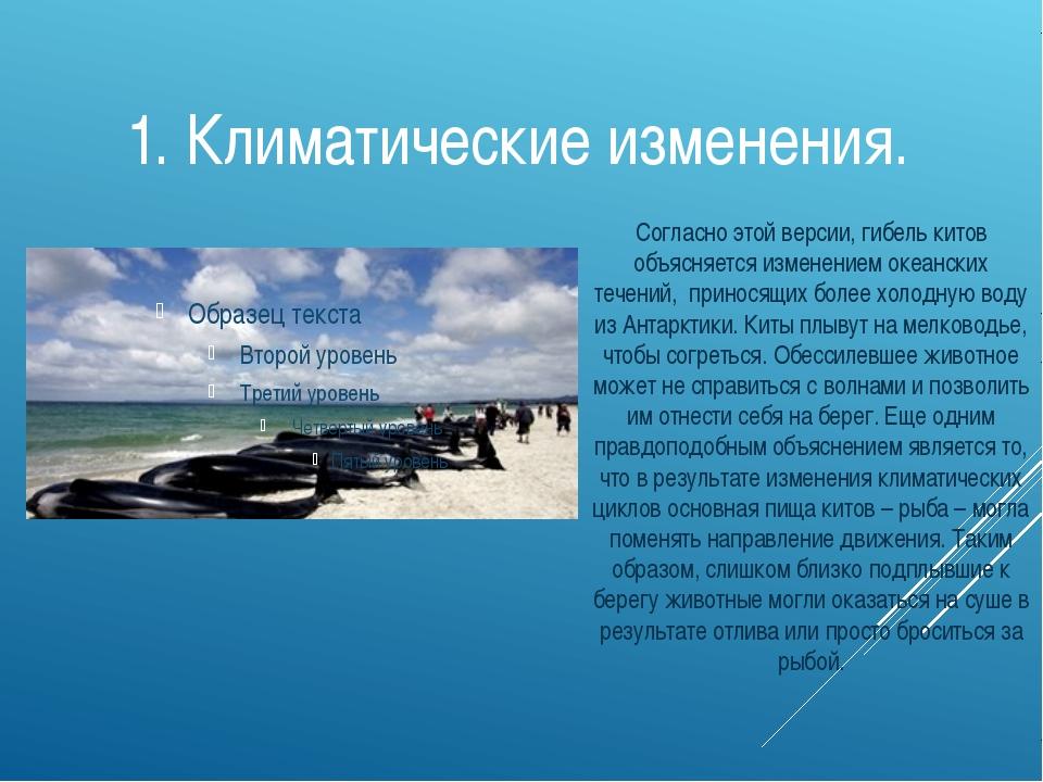 1. Климатические изменения. Согласно этой версии, гибель китов объясняется из...