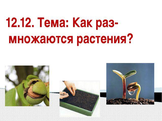 12.12. Тема: Как раз- множаются растения?