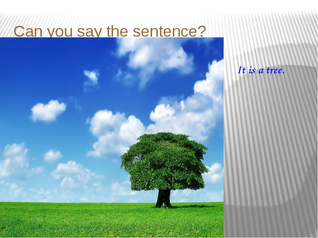 Can you say the sentence? It is a tree.