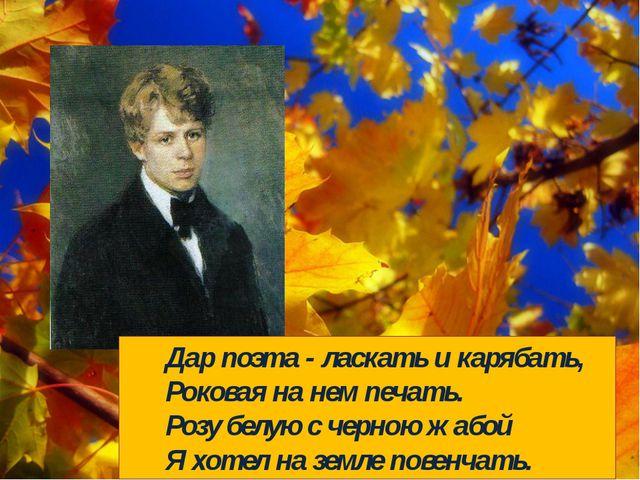 Дар поэта - ласкать и карябать, Роковая на нем печать. Розу белую с черно...